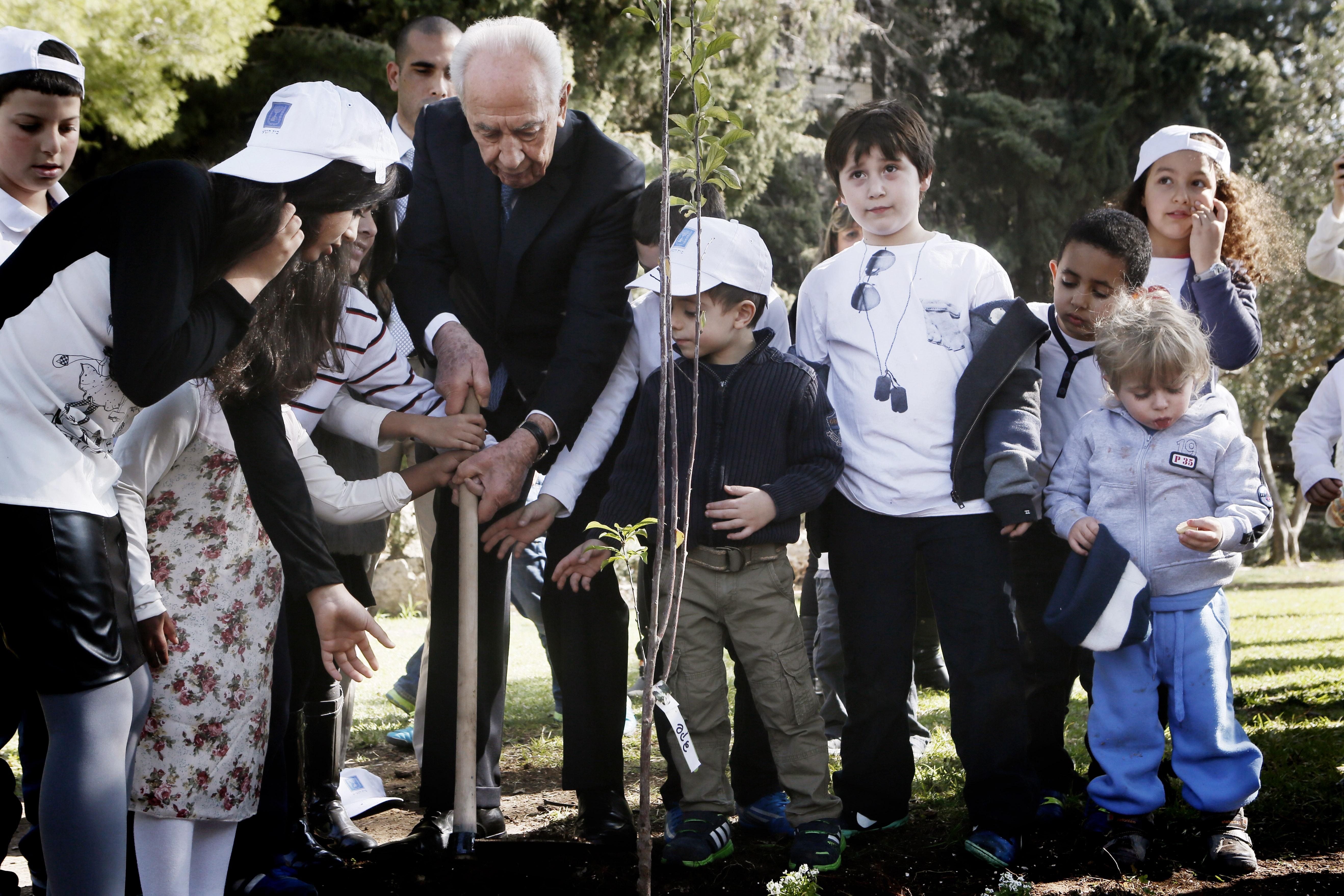 Peres in de tuin van zijn residentie waar hij voor Tu Bishvat een boom plantte samen met kinderen (2014). Foto: Miriam Alster/Flash90